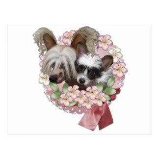 ピンクの花のリース-中国語によって頂点に達される碧玉のくすぐり ポストカード