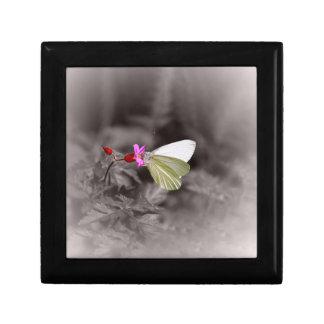 ピンクの花の蝶 ギフトボックス