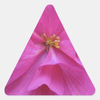 ピンクの花の閉めて下さい 三角形シール
