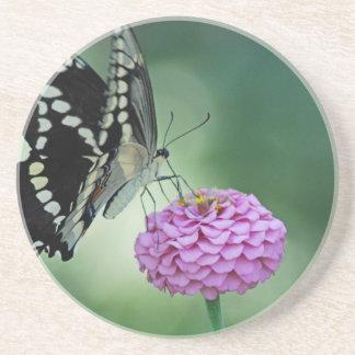 ピンクの花の黒いアゲハチョウの蝶 コースター