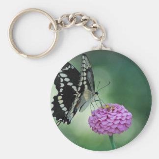 ピンクの花の黒いアゲハチョウの蝶 ベーシック丸型缶キーホルダー