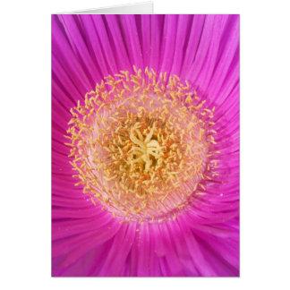 ピンクの花カード カード