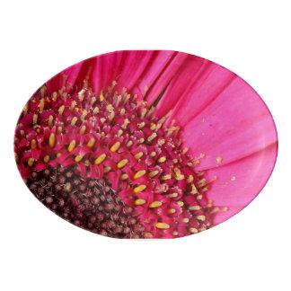 ピンクの花弁 磁器大皿