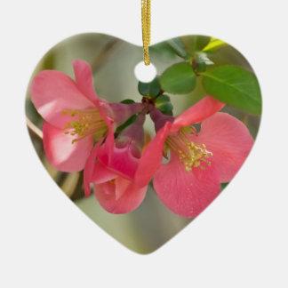 ピンクの花盛りのマルメロの白熱 セラミックオーナメント