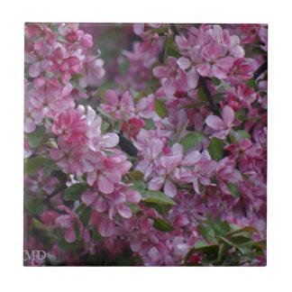 ピンクの花盛りの春の木 タイル