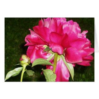 ピンクの花 カード