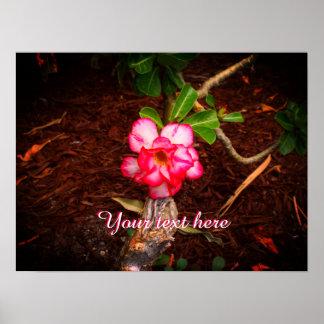 ピンクの花 ポスター