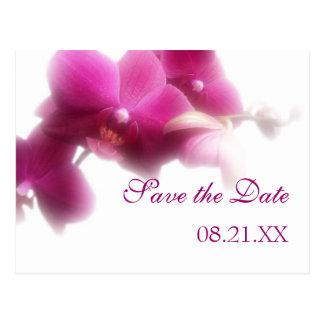ピンクの蘭のセーブ・ザ・デート案内 ポストカード