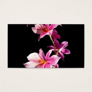 ピンクの蘭 名刺