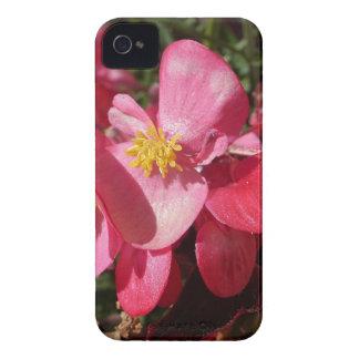 ピンクの輝き Case-Mate iPhone 4 ケース