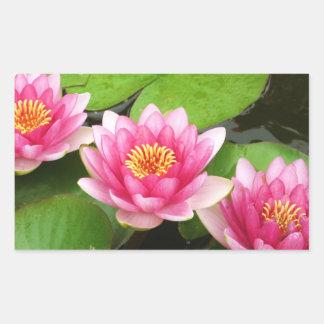 ピンクの《植物》スイレンかはすの花のステッカー 長方形シール
