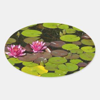 ピンクの《植物》スイレンの庭の池 楕円形シール