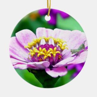 ピンクの《植物》百日草のベビーのバッタ 陶器製丸型オーナメント