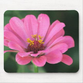 ピンクの《植物》百日草のマウスパッド マウスパッド