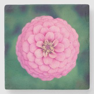 ピンクの《植物》百日草の石造りのコースター ストーンコースター