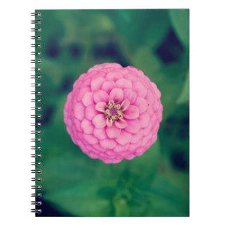 ピンクの《植物》百日草の花のノート ノートブック
