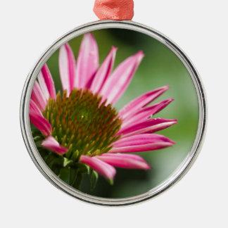 ピンクのEchinaceaのConeflowerの花の背景 メタルオーナメント