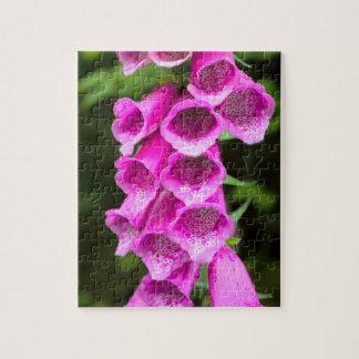 ピンクのFoxgloveの花のパズル ジグソーパズル