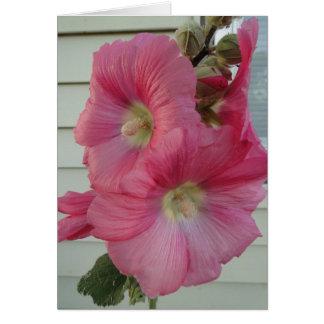 ピンクのHollyhock、誕生日の美しい女性 カード