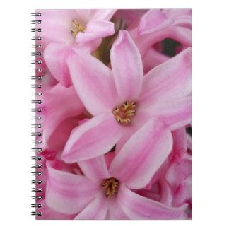ピンクのhyacinthの花 ノートブック