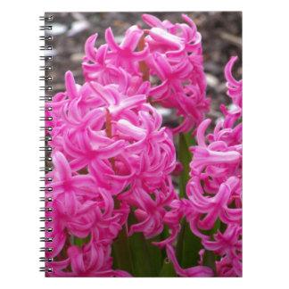 ピンクのHyacinth ノートブック