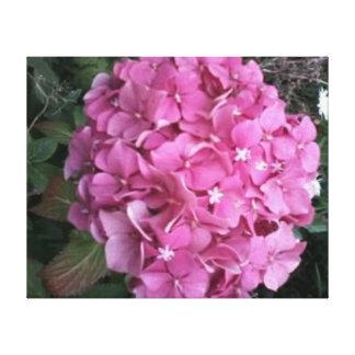 ピンクのhydrenga キャンバスプリント