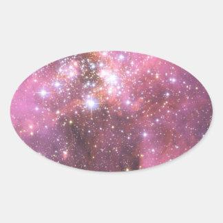 ピンクのNGC 346の詳細 楕円形シール