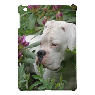 ピンクのRhodiesの白人のボクサー iPad Mini Case