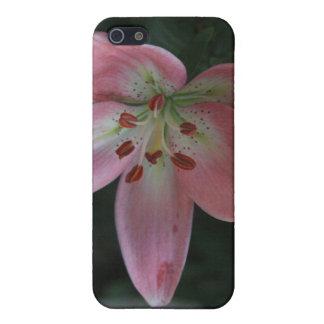 ピンクユリ4/4s iPhone 5 カバー