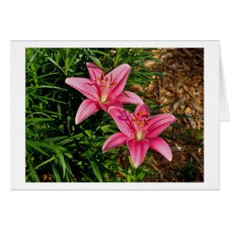 ピンクユリ カード