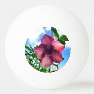 ピンクライト第1 卓球ボール