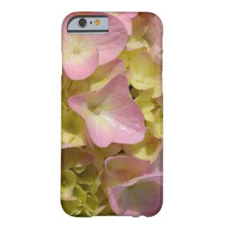 ピンク及びクリーム色のアジサイ BARELY THERE iPhone 6 ケース