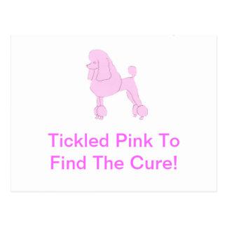 ピンク標準プードル ポストカード