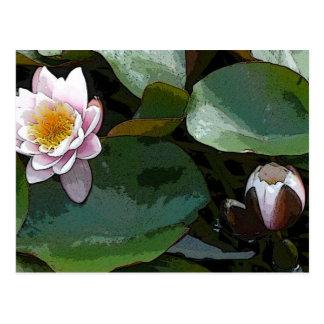 ピンク水ユリパッドの芸術 ポストカード