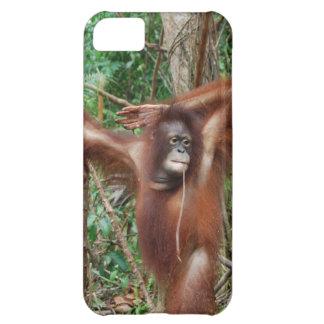 ピンナップの姿勢の美しい赤毛のオランウータン iPhone5Cケース