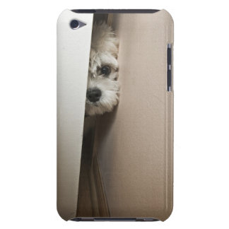 ピーカブー Case-Mate iPod TOUCH ケース