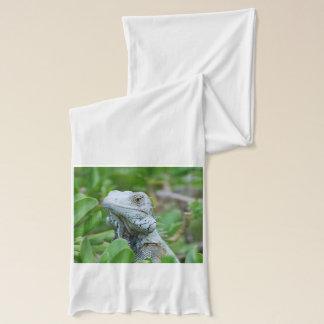 ピーカーブ式イグアナ スカーフ