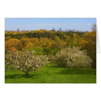 ピーターの丘からのボストンへのアーノルドの植物園の眺め カード