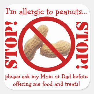 ピーナツアレルギーのパーティーか野外研究活動の警告 スクエアシール