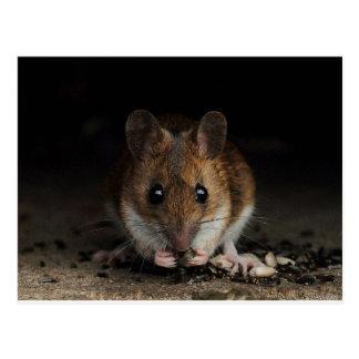 ピーナツ木製マウス ポストカード