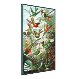 ファインアートのハチドリ-自然の芸術的な表現形式 キャンバスプリント