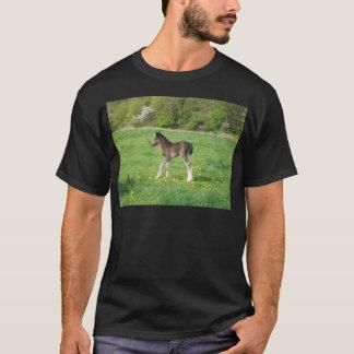 ファウル Tシャツ