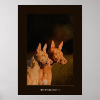 ファラオの猟犬ポスター ポスター