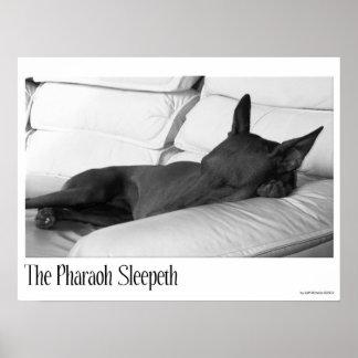 ファラオの猟犬  Pharoah Sleepeth ポスター
