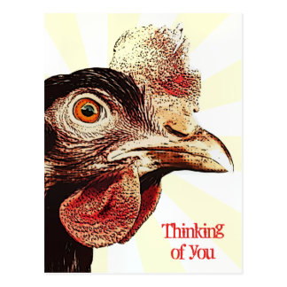 ファンキーで気難しい鶏のスーパースター ポストカード