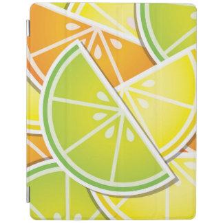 ファンキーな柑橘類のくさび iPadスマートカバー