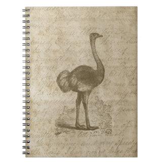 ファンシーなだちょうの原稿のヴィンテージの紙 ノートブック