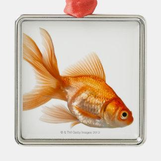 ファンシーな金魚 シルバーカラー正方形オーナメント