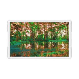 ファンタジーの森林 アクリルトレー