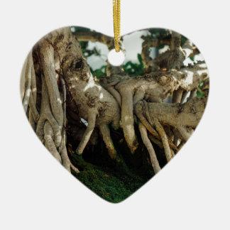 フィカスの盆栽の根 セラミックオーナメント